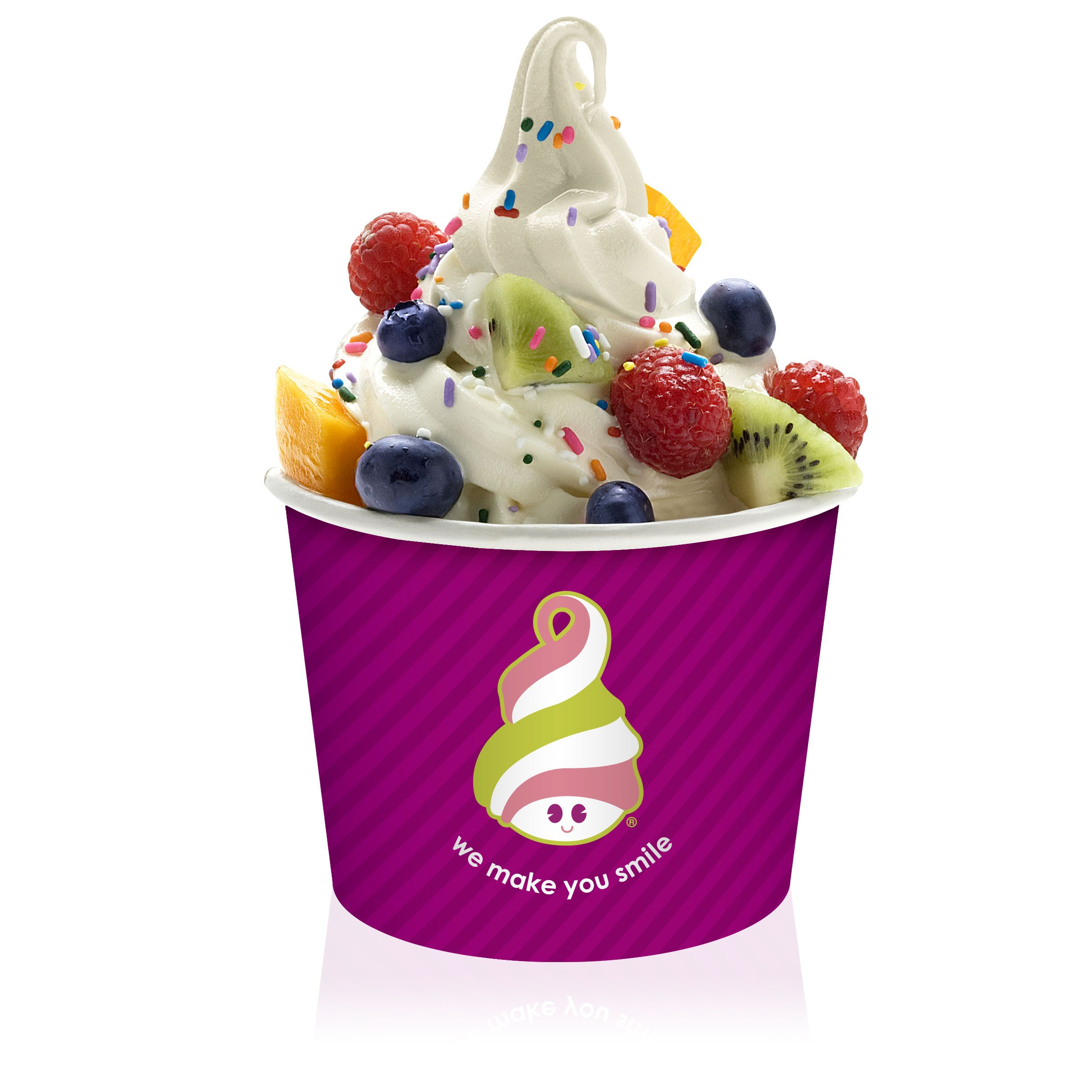 Menchie's Frozen Yogurt Franchise CEO featured on Top ...