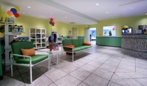 Dogtopia Franchise Interiors