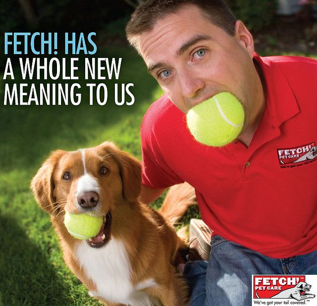 Fetch! Pet Care Franchise Photo by fetchpetcare