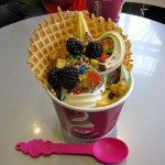 FDD Talk:  Wanna Know Menchie's Average Net Sales for 19 Franchise Locations?