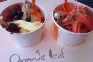 Orange Leaf Frozen Yogurt Photo by Aku Rabun