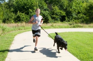 Dogs Love Running! Franchise Photo