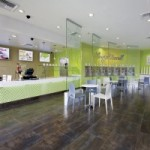 FDD Talk:  Breakdown of the Initial Investment for a Yogurtland Store, With a Few Important Changes from Last Year's FDD