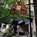 FDD Talk:  Annual Revenues and Various Expense Items for Mad Dogs British Pub