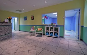 Dogtopia Interior Photo