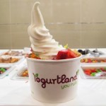 FDD Talk 2013: Yogurtland's Average Unit Sales Volume and EBITDA Statement (2013 FDD)