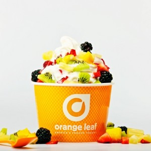 Orange Leaf Fruit Cup