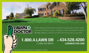 Lawn Doctor Photo by Kate McCay Design