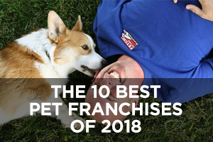 The Best Pet Franchises of 2018