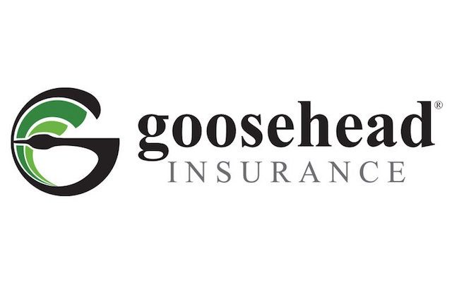 FDD Talk: Goosehead Insurance Franchise Review (Financial Performance Analysis, Costs, Fees, and More)